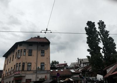 Cables de los muchos tranvías que hay en la ciudad
