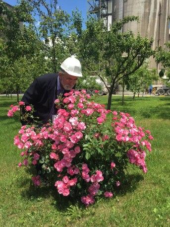 Ratko Orozović, Director del Viva Festival, oliendo unas rosas